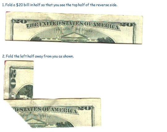 the one dollar bill owl. american one dollar bill owl.