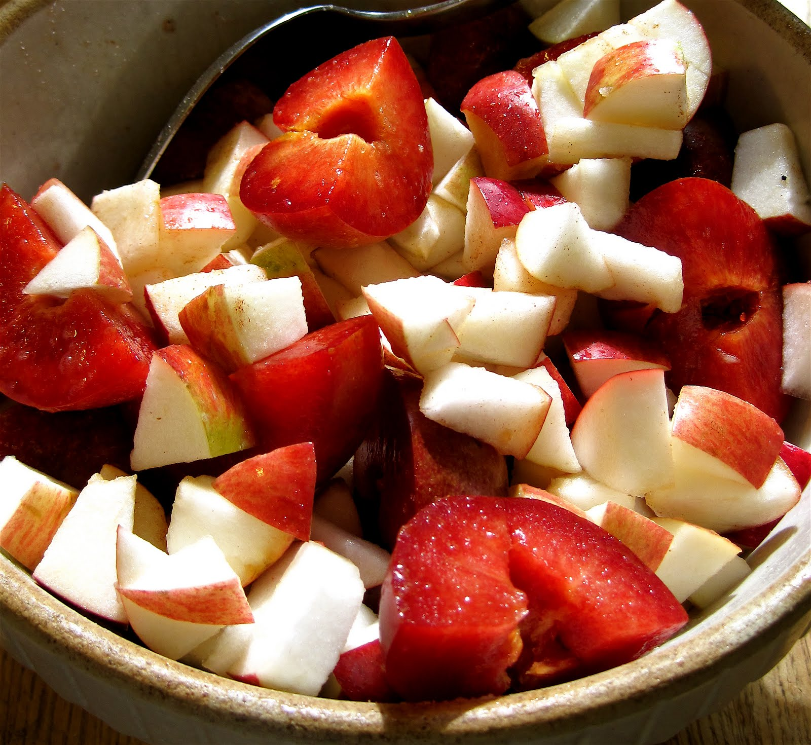 What's for Dinner Minneapolis?: Plum-Apple Top Crust Pie