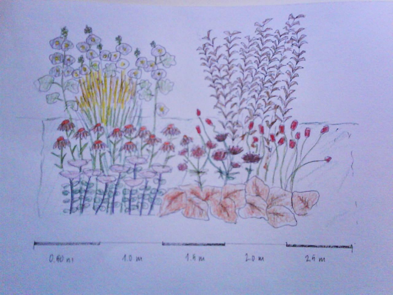Trädgårdsmästardrömmar: att rita trädgårdar och rabatter...