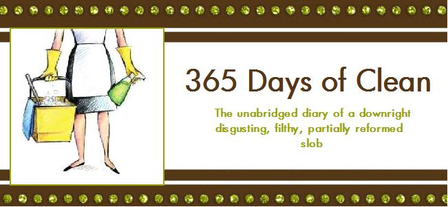 365 Days of Clean