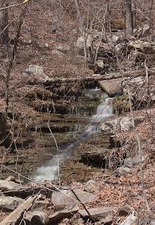 Photograph near Kings Bluff Falls
