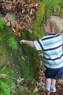 Grant feeling the moss