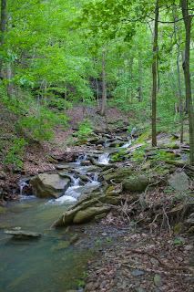 Keefe Falls Drainage