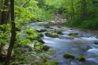 Blanchard Springs Stream
