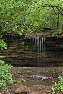Pig Trail Falls