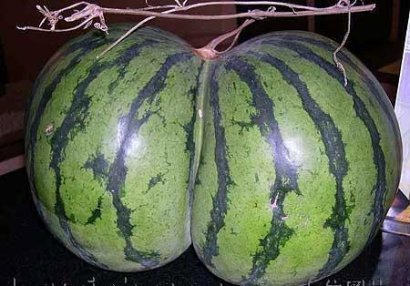 They call her Watermelon Woman, Andressa Soares of Rio de Janeiro,