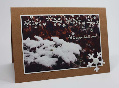 winter photo card
