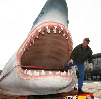 chose the megalodon because it is very big and long a megalodon can