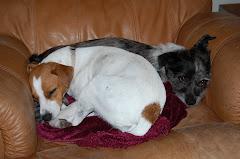 Snuggling Sisters