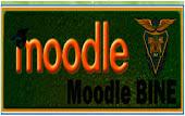 Plataforma Moodle BINE