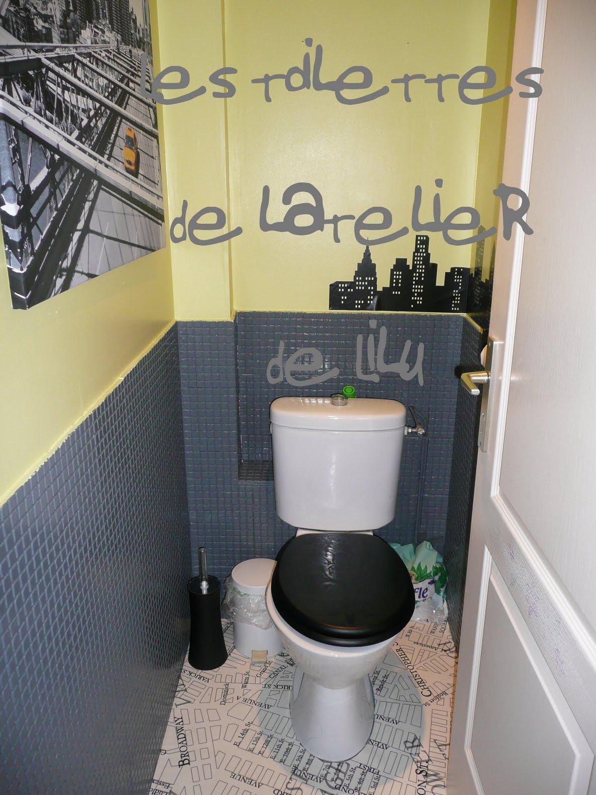 Le journal d 39 en haut de mademoiselle caroline aux chiottes for Repeindre les toilettes