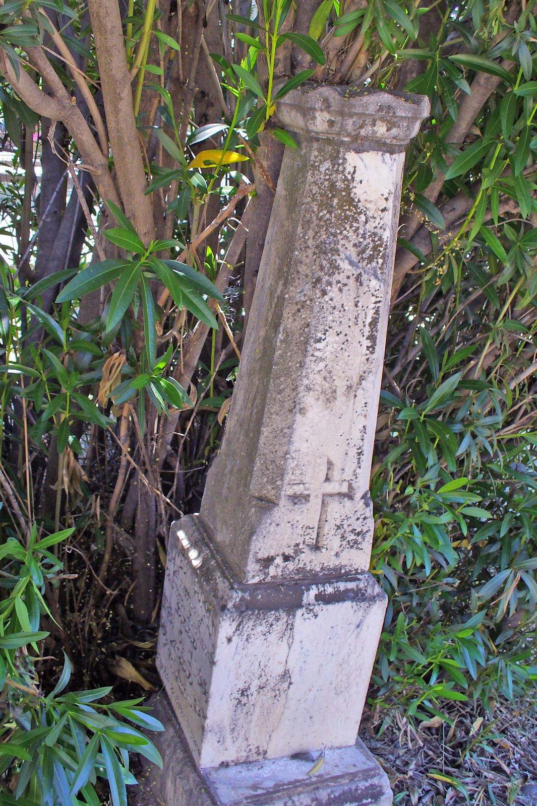 [P1020391.jpg+oleander+stone]
