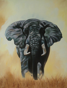 Name : Elephant Alone