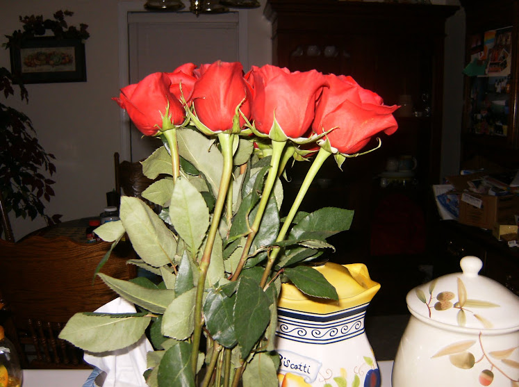 Roses my boyfriend gave me