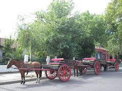 Tradicionales cabritas para el transporte de turistas en Fiestas Patrias