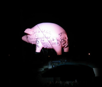 Flying pink pig - side 2.