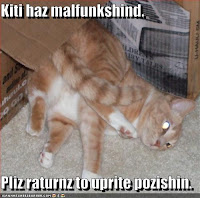 Kiti haz malfunkshind - KTHX CHEEZBURGER.