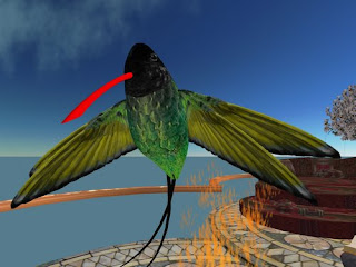 second life animals - humming bird