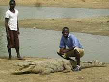 One Question with a crocodile