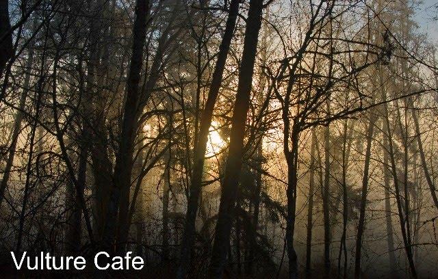 Vulture Cafe