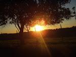 Nascer do sol e paisagens.