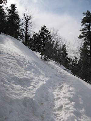 Green Mountain, Snowy E.M. Greenman Trail