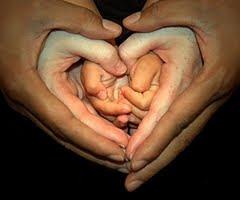 http://3.bp.blogspot.com/_rbjbN0-oAho/S5lOvd7eMSI/AAAAAAAABQU/oHrgbv3CbVQ/s320/heart+hands+family+portrait.jpg