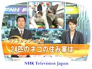 NHK TV JAPAN