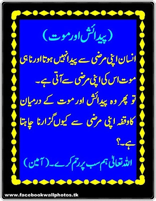Facebook Latest Funny Islamic Quotes Aqwal Hazrat Urdu Html
