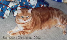 Sampson Christmas 2003