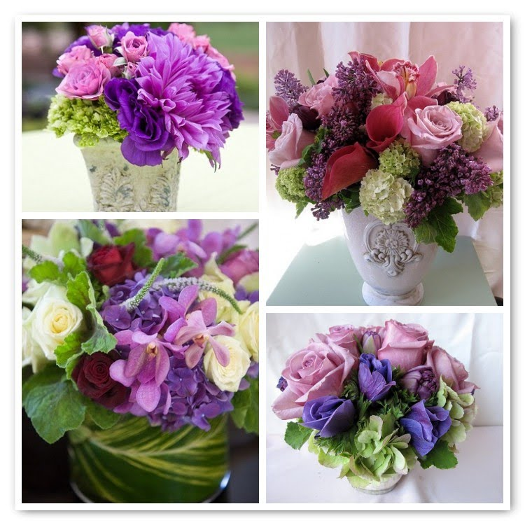 Hidden Garden + Purple