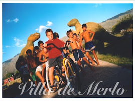 VILLA DE MERLO