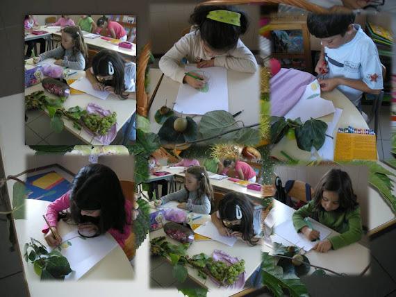 Outono chegou à sala de aula