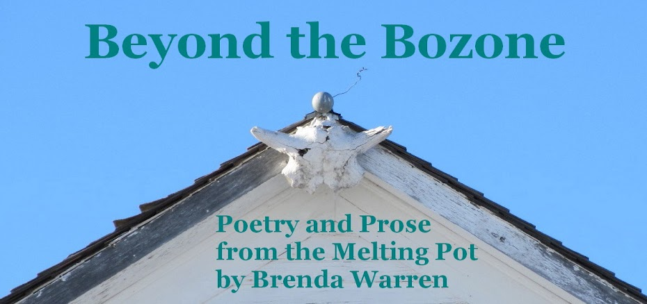 Beyond the Bozone