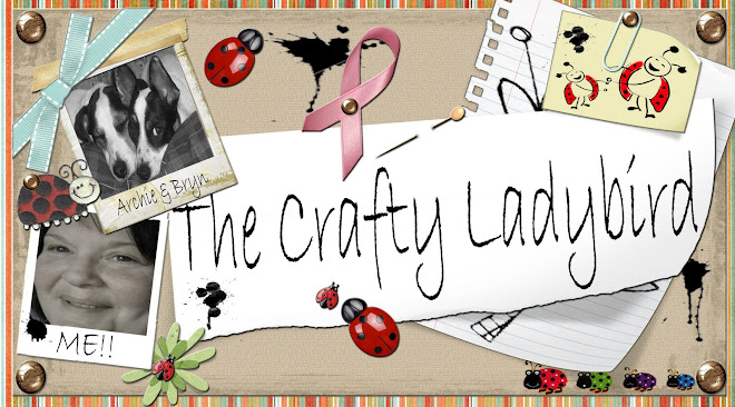 The Crafty Ladybird