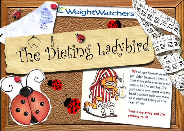 The Dieting Ladybird