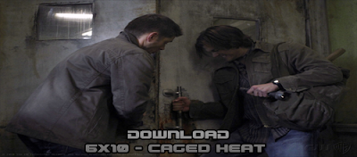 http://3.bp.blogspot.com/_rlup1MxyxF8/TOs65h_f0gI/AAAAAAAADx8/UfJ7XljSN4o/s1600/Caged-Heat%2BDownload.png