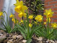 Landal voorjaarskorting www.landal.nl/m1039l Voorjaars voordeel cheque - 30% korting.