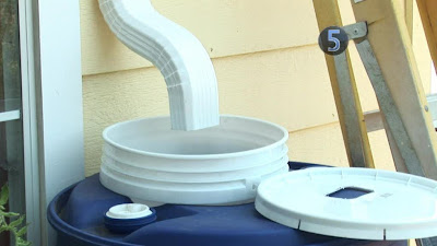 Dig it rainwater harvesting systems for Build a rainwater collection system