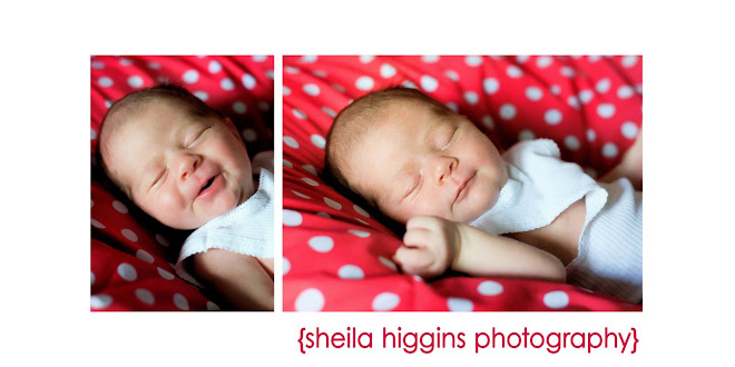 Sheila Higgins Photography Blog
