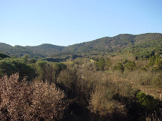 Vallromanes (BCN)