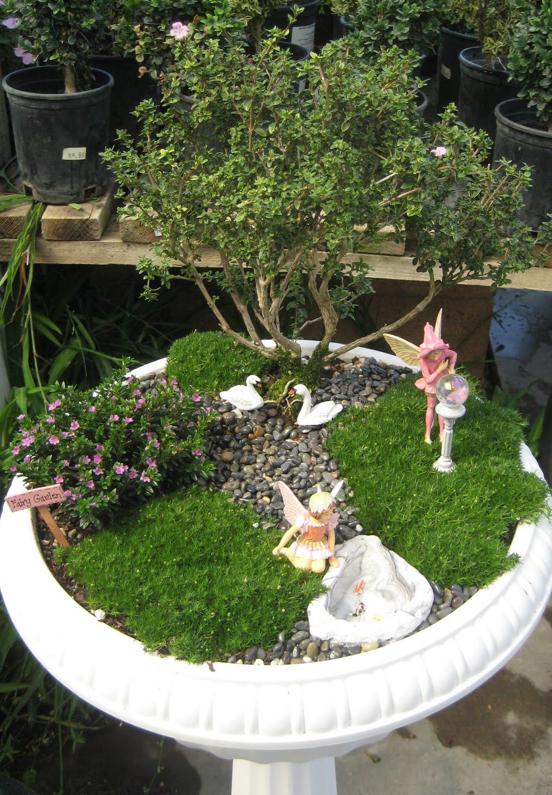 Fairy gardens on pinterest fairies garden miniature Small garden fairies
