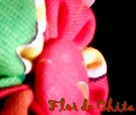 FLOR DE CHITA DE AMARGOSA