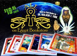 All Eyes On Egypt Bookstore