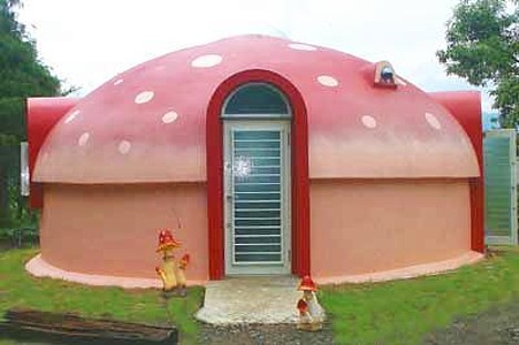Geodesic dome shelter styrofoam dome houses for Japan dome house price
