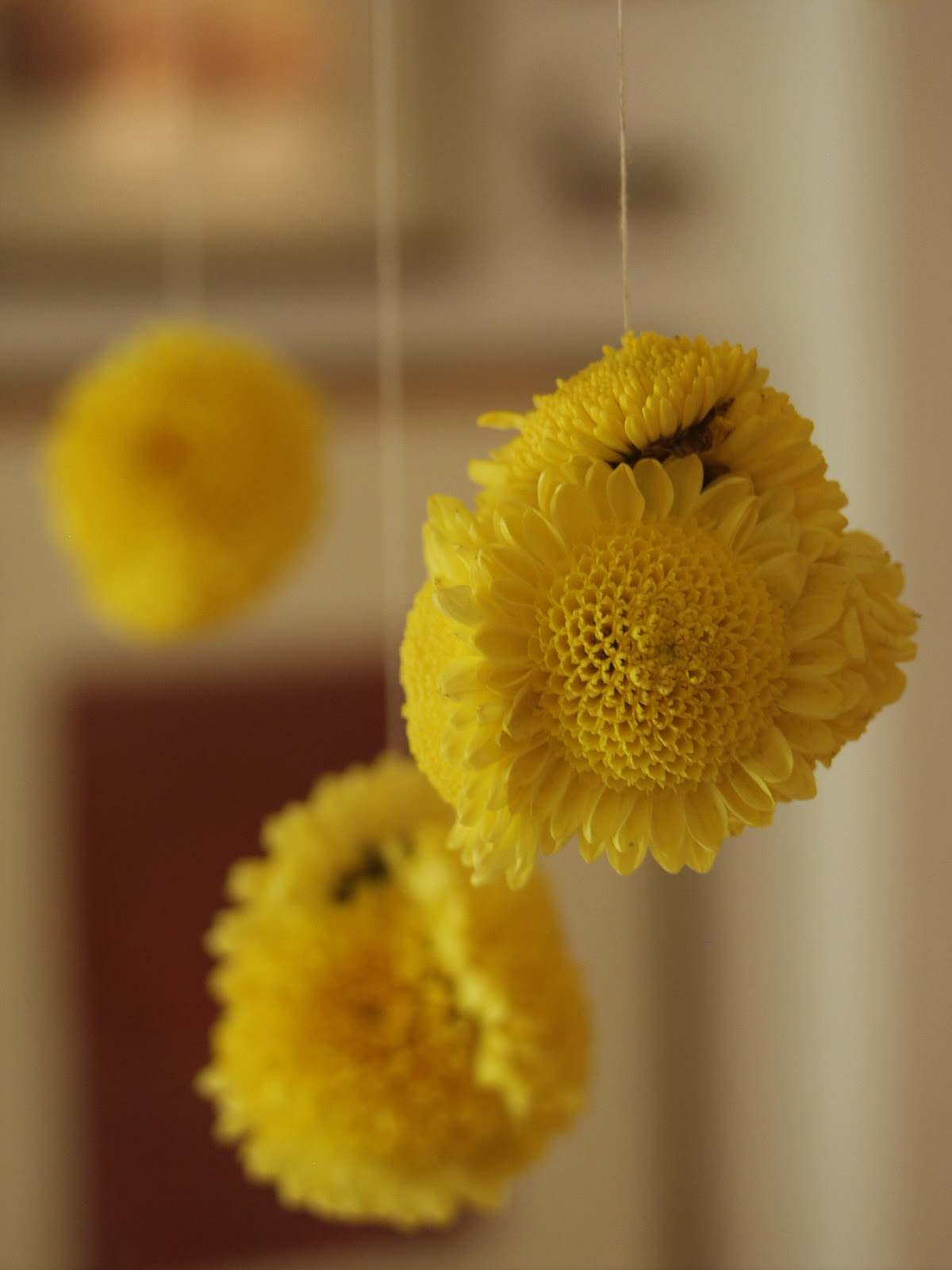 Rajee Sood Quick And Easy Hang Some Flower Balls This Diwali