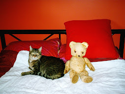 Rufus (with Bingo my teddy)