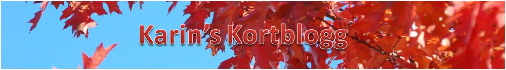 Karin's Kortblogg
