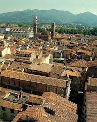 Lucca: chiesa e torre in lontananza