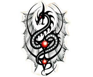 Dragon Tattoos ( 5 )